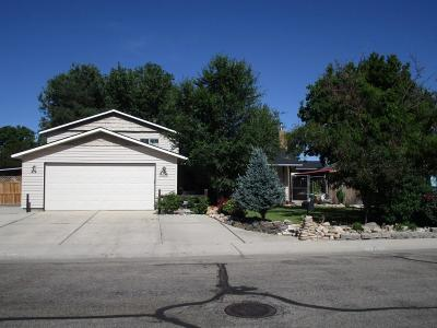 Boise Single Family Home For Sale: 2266 S Quicksilver St
