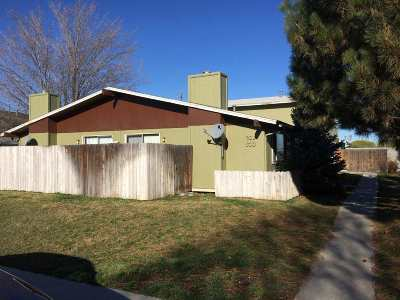 Boise Multi Family Home For Sale: 533 S White Cloud Dr.