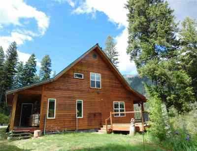 Cascade, Donnelly, Mccall, New Meadows Single Family Home For Sale: 1700 Johnson Creek Road