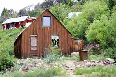 Owyhee County Single Family Home For Sale: 8422 Trade Dollar Street