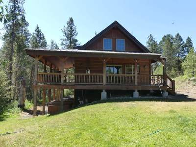 McCall ID Single Family Home For Sale: $609,500