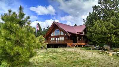 Cascade Single Family Home For Sale: 10360 Gamann Dr