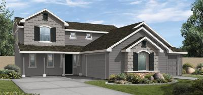 Nampa Single Family Home For Sale: 11114 W Troyer Dr.