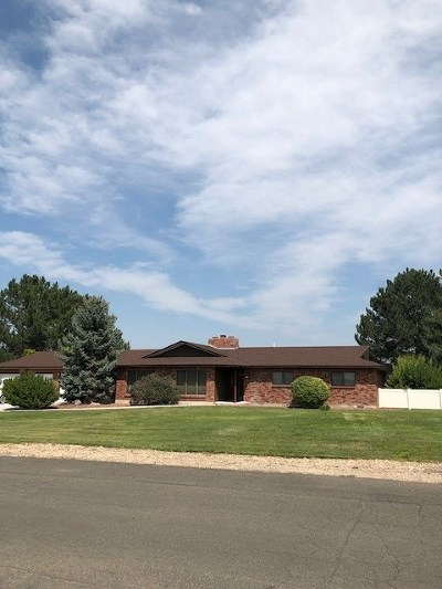Nampa Single Family Home For Sale: 3210 Ginger Lane