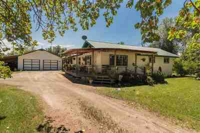 Filer Single Family Home For Sale: 405 North St.