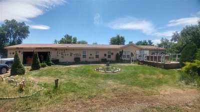 Single Family Home For Sale: 375 Kathleen