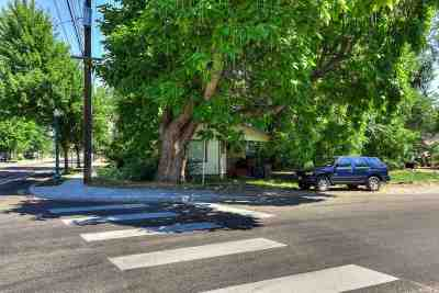 Eagle Single Family Home For Sale: 16 E Idaho Street