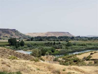Owyhee County Single Family Home For Sale: 6900 Wild Game