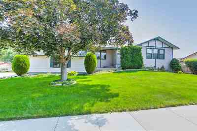Boise Single Family Home For Sale: 3902 N Shamrock Ave