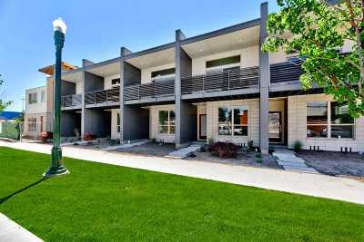 Boise Multi Family Home For Sale: 1619 W Idaho Street