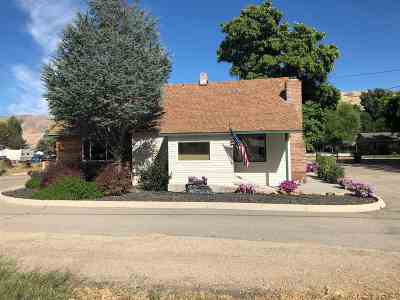 Commercial For Sale: 407 Highway 55