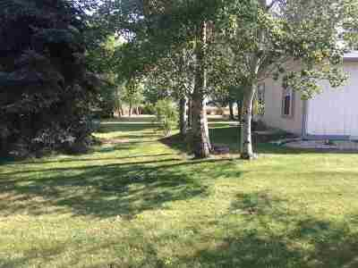 Shoshone Single Family Home For Sale: 220 E 520 N