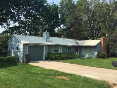 Shoshone Single Family Home For Sale: 417 W 4th St