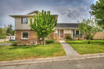 Emmett Single Family Home For Sale: 1073 Lilac Ln