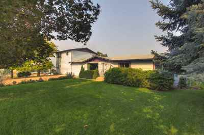 Nampa Single Family Home For Sale: 1120 N Robinson Blvd
