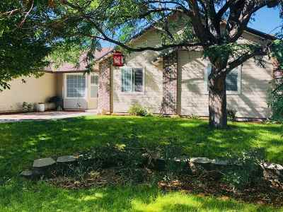 Meridian Single Family Home For Sale: 1000 W Louisville