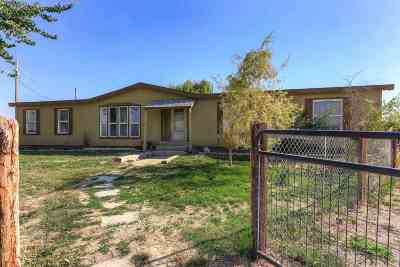 Nampa Single Family Home For Sale: 80 S Robinson Rd