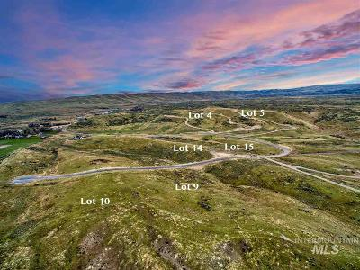 Eagle Residential Lots & Land For Sale: 8405 W Moose Horn Ln