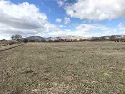 Farm & Ranch For Sale: Pringle Rd.
