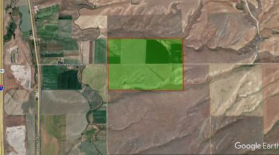 Farm & Ranch New: 4500 E Smith Canyon Rd.