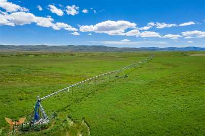 Fairfield ID Farm & Ranch For Sale: $1,500,000