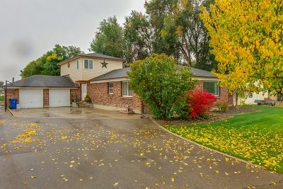 Nampa Single Family Home For Sale: 329 W Georgia Ave