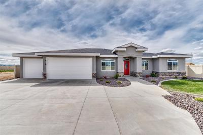 Meridian Single Family Home For Sale: 3937 W Ravenna St