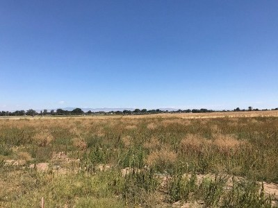 Nampa Residential Lots & Land For Sale: Happy Valley Rd