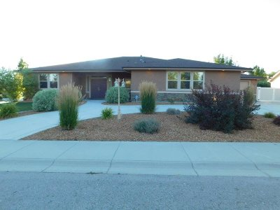 Meridian Single Family Home New: 1080 N Crystal Cove
