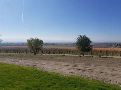 Canyon County Residential Lots & Land For Sale: Homedale Rd