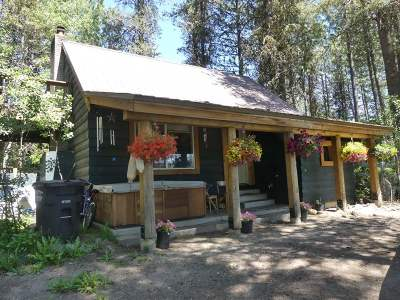 McCall ID Single Family Home For Sale: $239,900