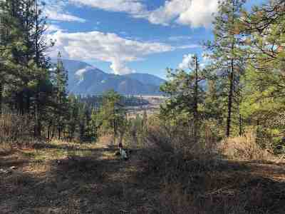Boise County Residential Lots & Land For Sale: Brush Creek