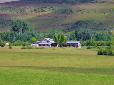 Farm & Ranch For Sale: 2490 Cemetery Lane