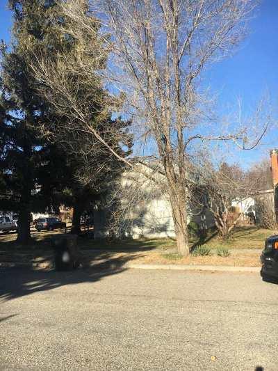Shoshone Single Family Home For Sale: 317 S Alta St