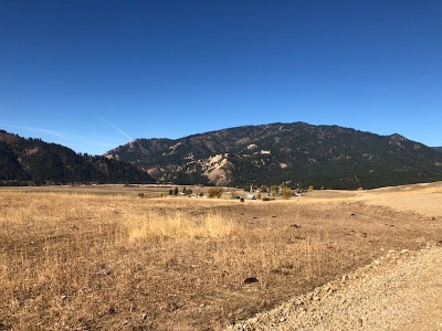 Residential Lots & Land New: Banks Lowman Hwy