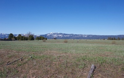 Residential Lots & Land New: Hwy 55