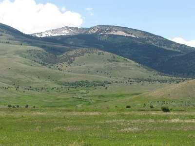 Farm & Ranch New: Tbd