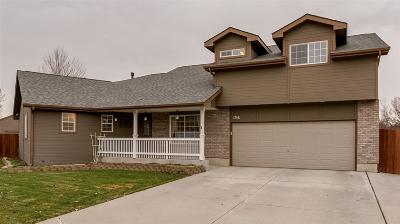 Boise Single Family Home For Sale: 1756 Magic Mill Pl