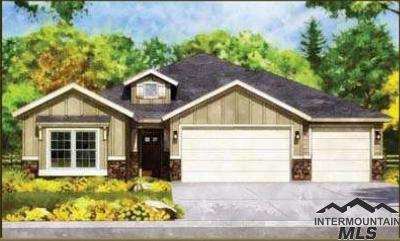 Boise Single Family Home For Sale: 825 S Hilton Street