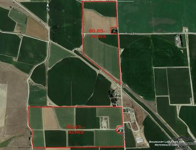 Farm & Ranch For Sale: Northside Road