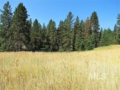 Boise County Residential Lots & Land For Sale: 33 Scriver Woods