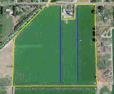 Heyburn ID Residential Lots & Land For Sale: $642,690