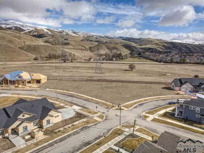 Ada County Residential Lots & Land For Sale: 2834 S Shadywood Way