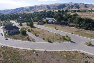 Boise County Residential Lots & Land For Sale: Saddlenotch Drive