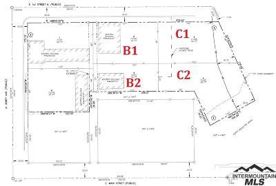 Middleton Commercial For Sale: 324 E 1st St