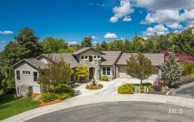Boise Single Family Home For Sale: 2584 E Varco Via Court