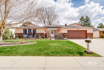 Boise Single Family Home For Sale: 4730 S Chinook Ave