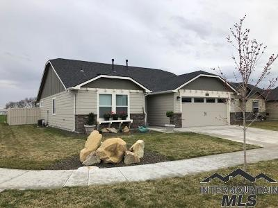Boise Single Family Home For Sale: 12563 W Peak View St.