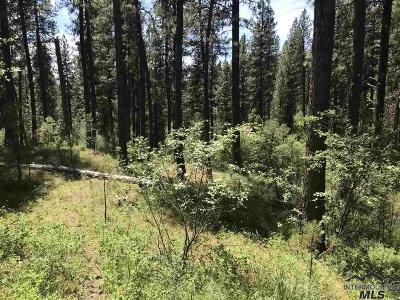 Boise County Residential Lots & Land For Sale: 2 Card Creek, Casey Estates#3
