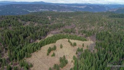 Orofino Residential Lots & Land For Sale: Loseth Road